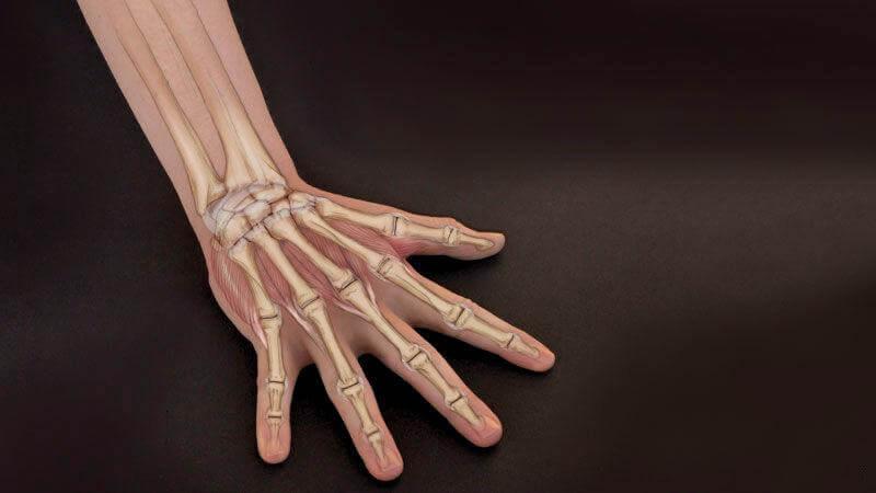 Bảo vệ cổ tay để tránh chấn thương khi tập yoga