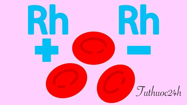 Những điều cần biết về nhóm máu hiếm để bảo vệ bản thân và cứu người