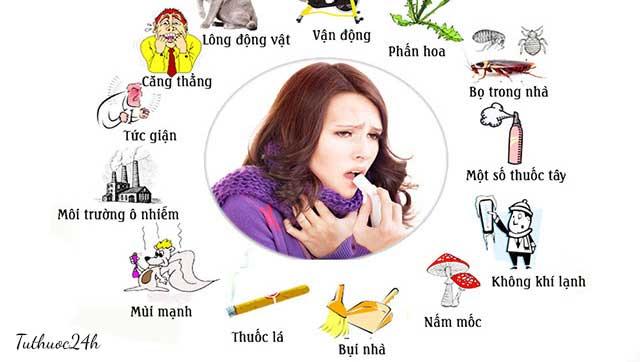 Viêm xoang mũi dị ứng và những điều bạn cần biết