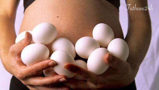 Ăn trứng ngỗng khi mang thai có gây tác hại gì không?