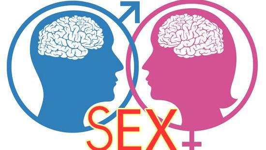 Đàn ông hay phụ nữ ai có nhu cầu sinh lý cao hơn