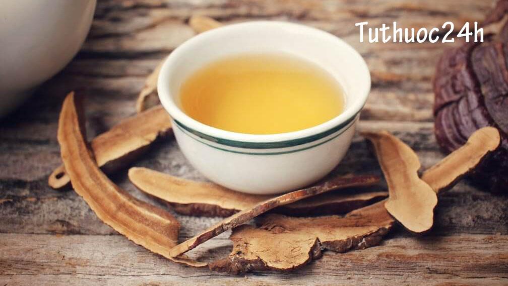 Bí quyết cách nấu nước nấm linh chi với tác dụng giảm cân hiệu quả