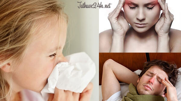 Viêm mũi dị ứng có lây không? Tìm hiểu ngay